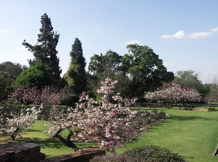 Johannesburg rose garden at Emmerentia Dam (C) NJR ZA (Creative Commons)
