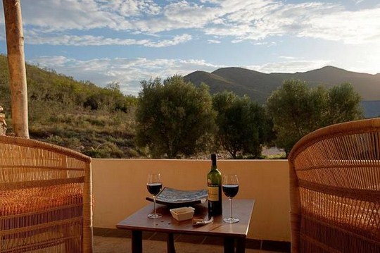 Africa s biggest chair launches at rooiberg winery - What time does the olive garden close ...