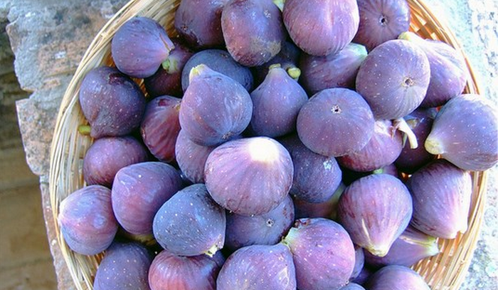 fruit picking fig fruit