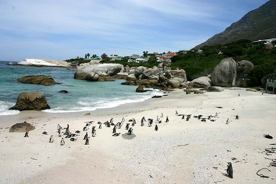 Beaches In The Western Cape That You Don T Want To Miss