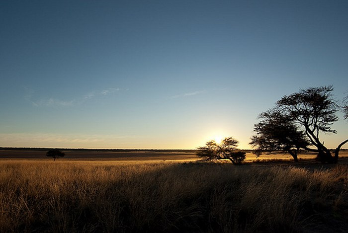 kgalagadi-Sunrise_over_pan_by_Pavel_Tcholakov_(flickr)