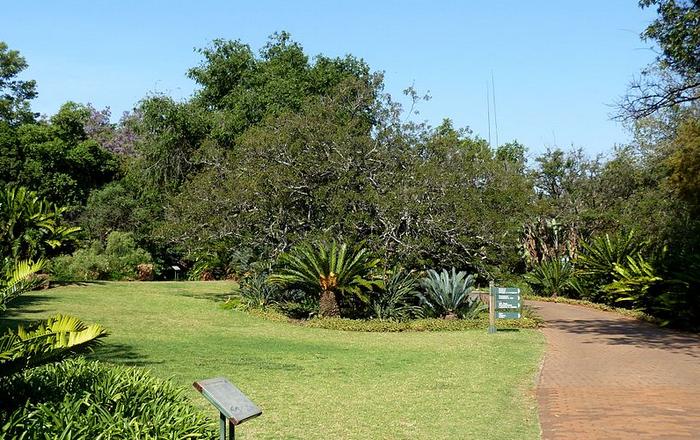 Pretoria National Botanical Garden (Wikipedia)