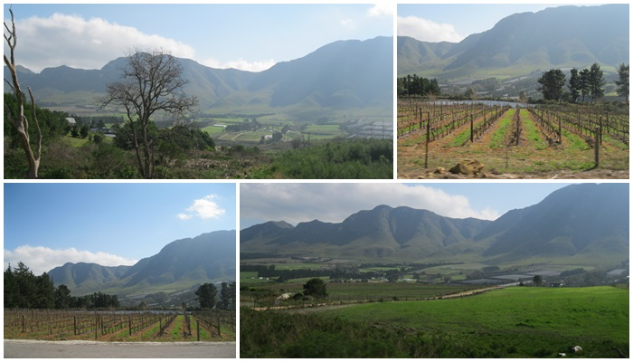 H&A Wine Route (C) Roseanna McBain