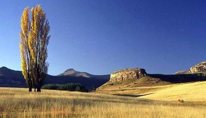 Mushroom Rock (C) Clarens.co.za