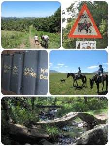 A few classic Hogsback snapshots (Flickr-collage 2)