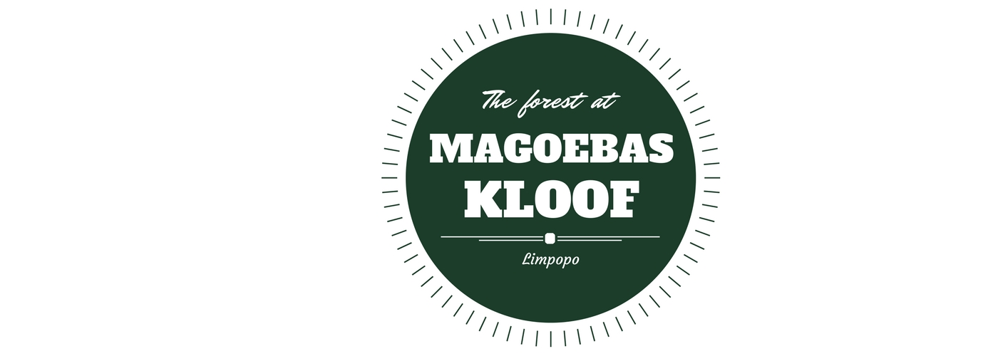 Magoebaskloof