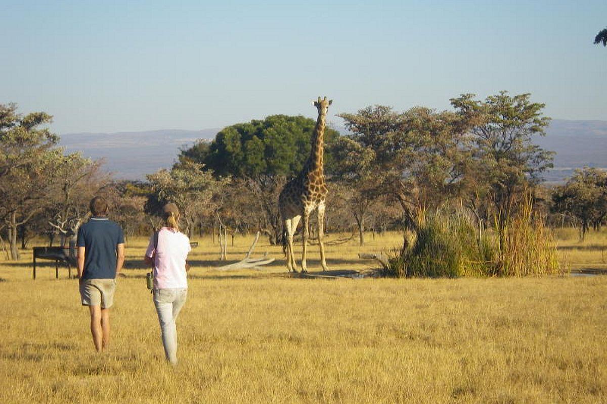 Hier by Matamba is daar talle wild te sien | Foto: LekkeSlaap.