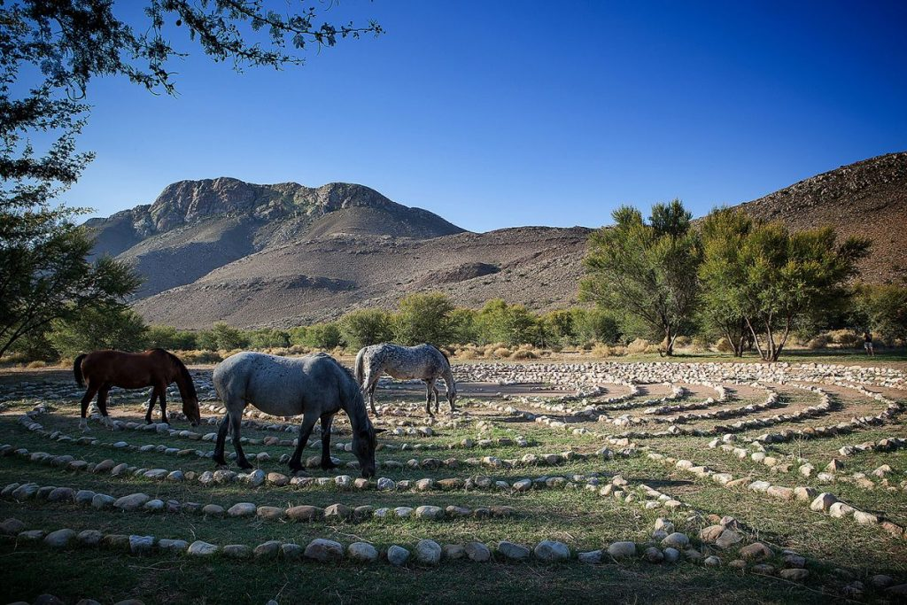 The labyrinth and horses at Onse Rus Guest House | Photo: TravelGround.