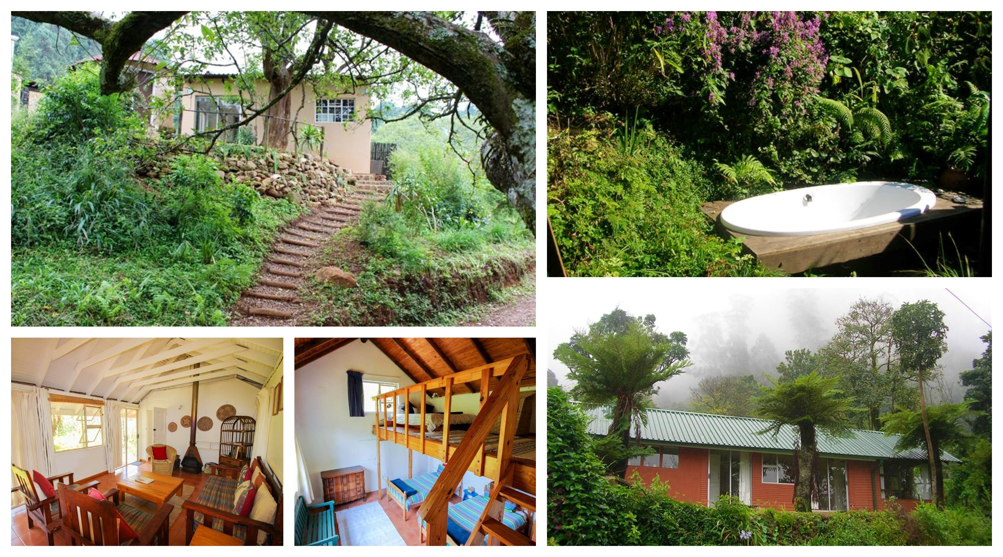 Magoebaskloof Birders' Cottages