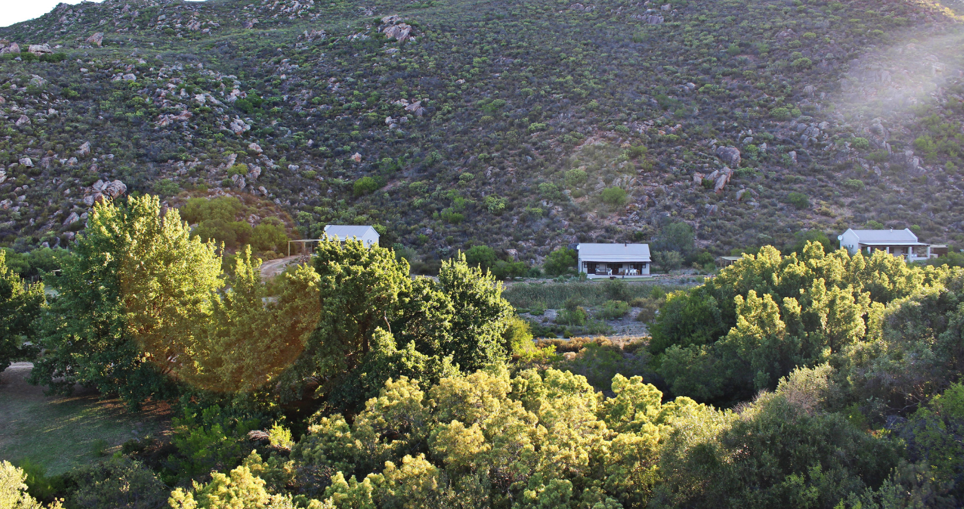 The chalets are nestled in a fynbos kloof outside Citrusdal.