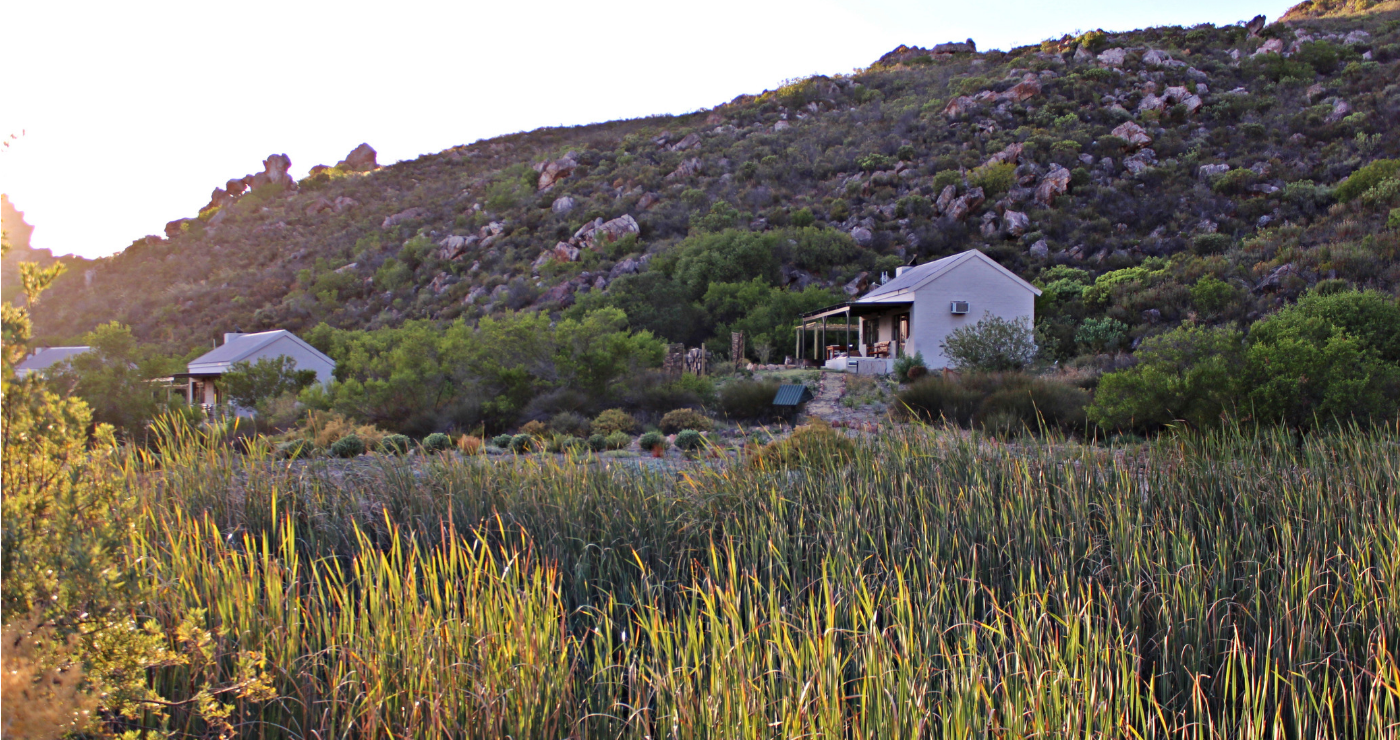 Chalets at Cederkloof.
