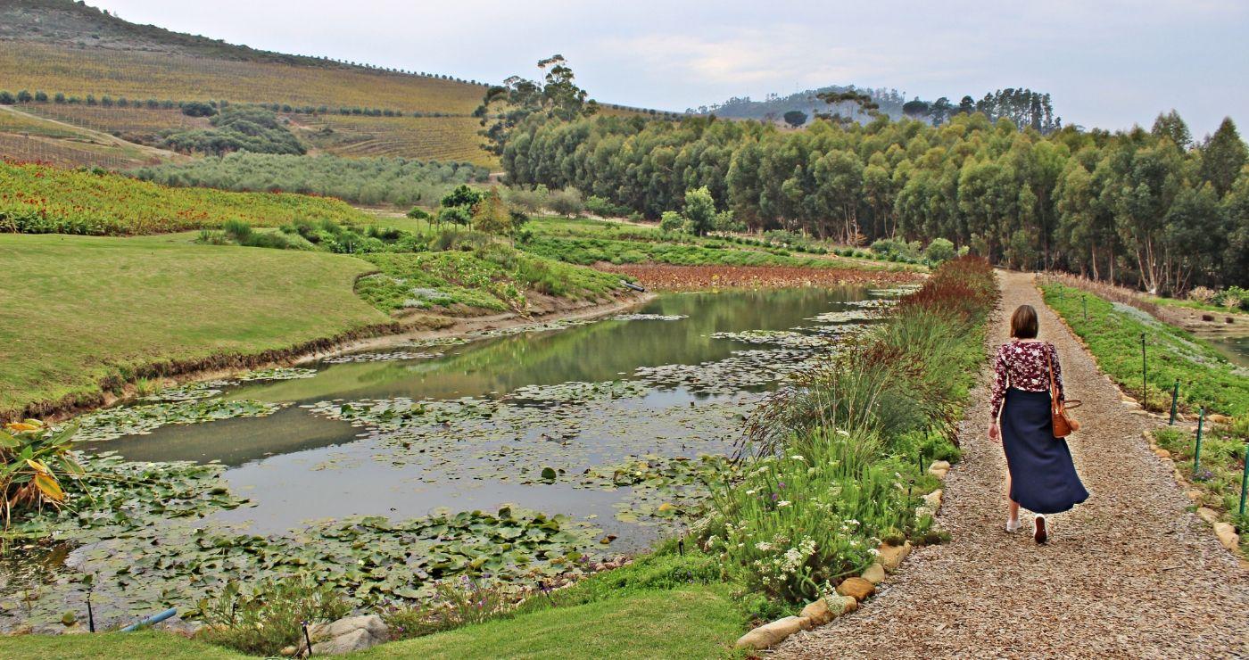 So sluit ons ons tydjie in Stellenbosch af (Adriëtte le Roux)