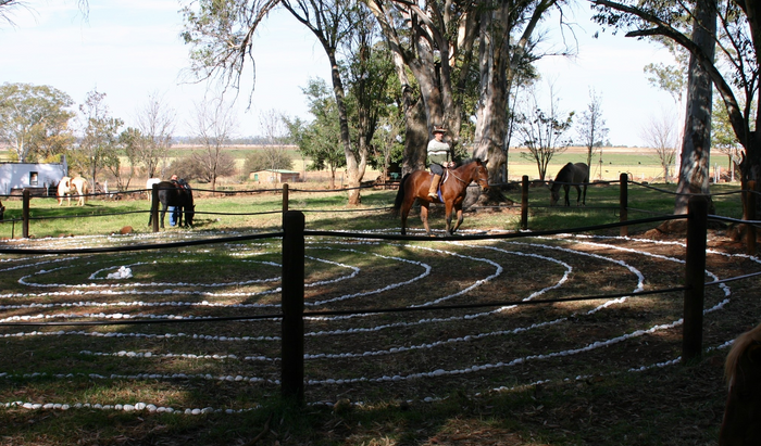 Horse labyrinth by South africa.net