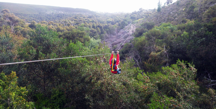 Hermanus zipline tour supplied by SA Forest Adventures