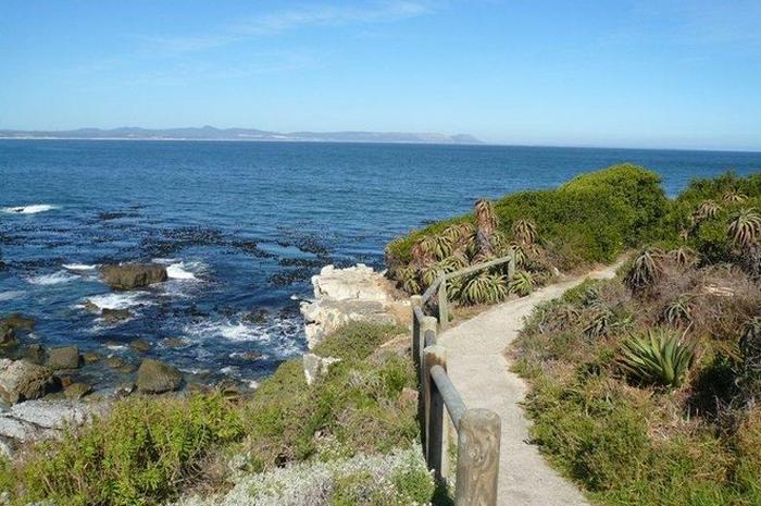 Cliff path in Hermanus