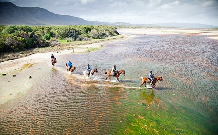 Beach rides supplied by African Horse Company