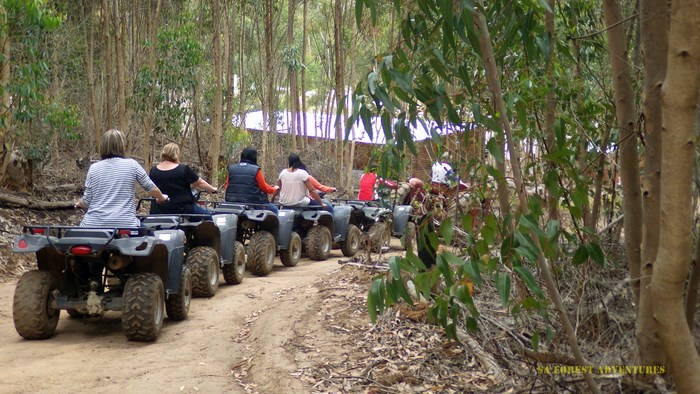 Quad bikes supplied by SA Forest Adventures