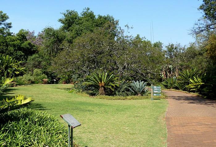 30 Winter Picnic Spots In Pretoria Travelground Blog